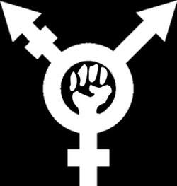 Transgender Feminist2