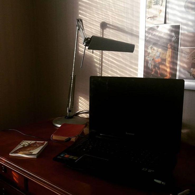 Skrivbordssolsken #skrivbord #mitthörnivärlden #vårenkommersnart
